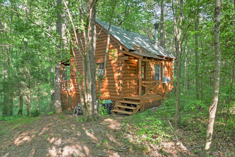 Relax in privacy when you stay at this 1-bedroom, 1-bathroom  Ellijay cabin, surrounded by old growth hardwoods!