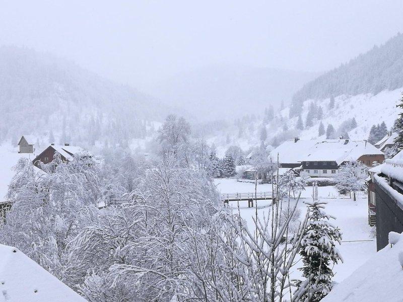 Winter in Menzenschwand, view from the window