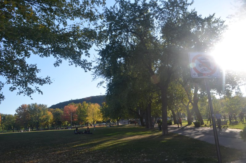 Within walking distance: Mt Royal and Jeanne Mance Park (5 mins)