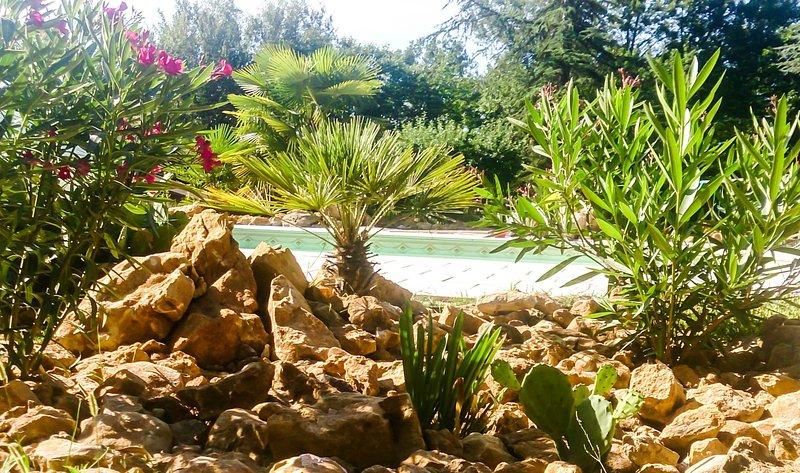 exotic pool area