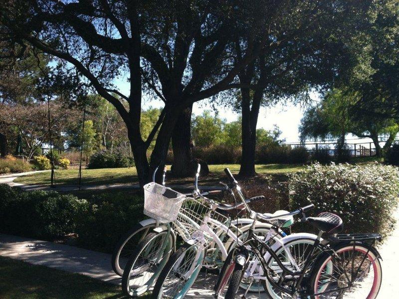 La cabaña cuenta con una colección de bicicletas de crucero alrededor de la ciudad