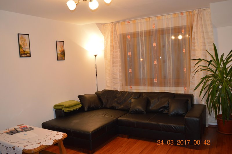 Living room with  large and comfortable sofa