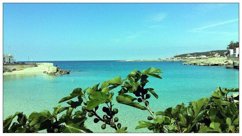 De la playa de vista de Santa María de la Torre Alta se encuentra detrás de Porto Selvaggio