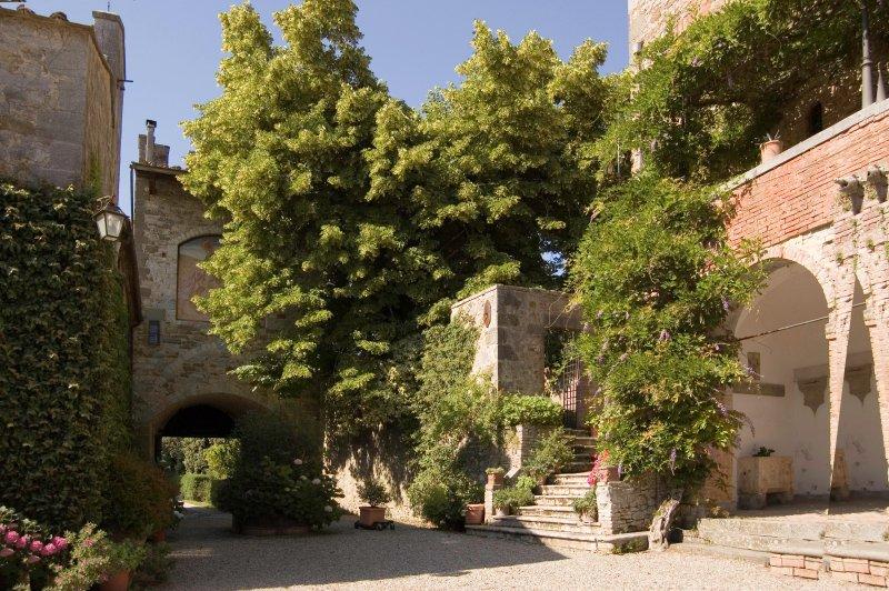 Castello Di Montalto - 4 bedroom Villa in Chianti, holiday rental in Montebenichi