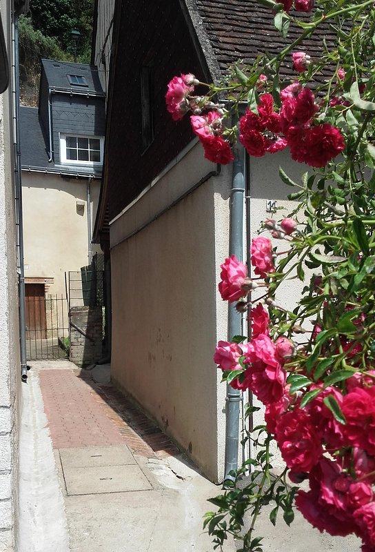 Passage between 2 houses.