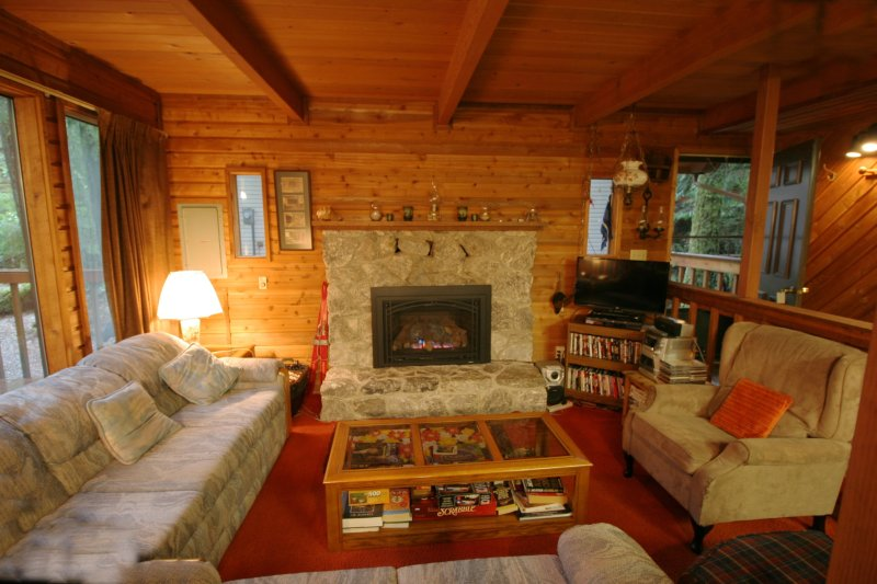 Mt. Baker Lodging – Cabin #35 – A/C, PETS OK, DISHWASHER, FIREPLACE, SLEEPS-6!