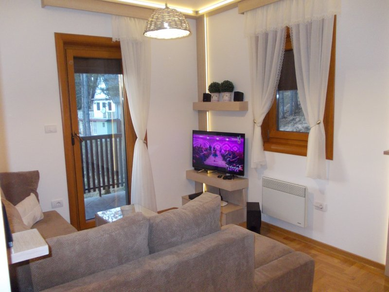 Stunning 1-Bed Apartment in Zlatibor, holiday rental in Cajetina