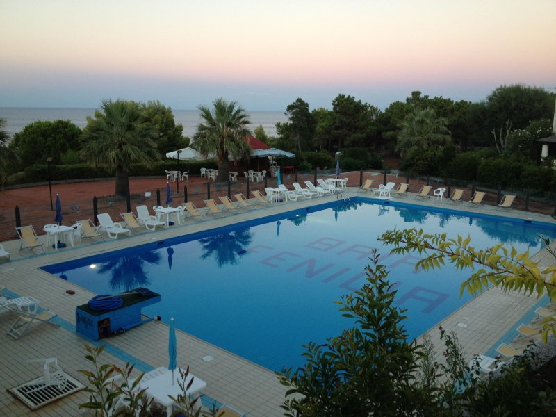 the swimming pool in the residence