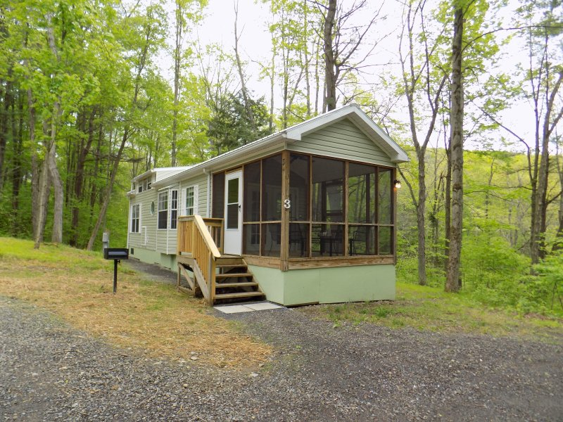 Old World Village Cabin #3, holiday rental in Davenport Center