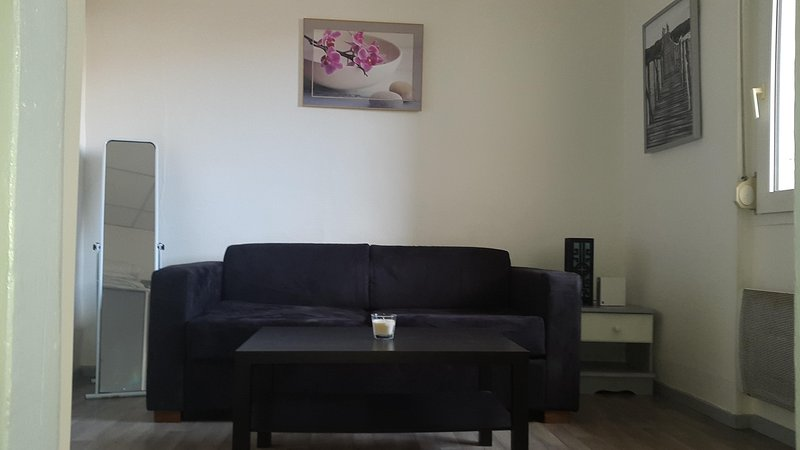 location t1 avec cour privative, holiday rental in Astaffort
