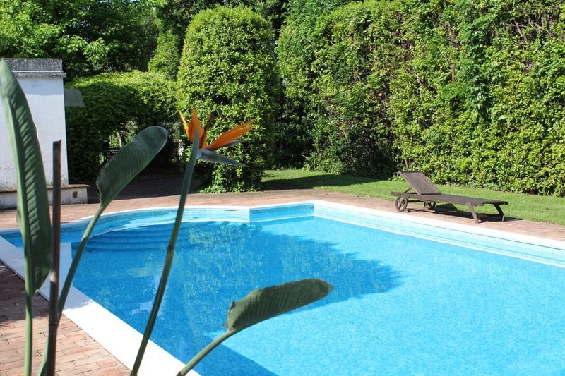 Apt con piscina immerso nel parco, holiday rental in Caprona