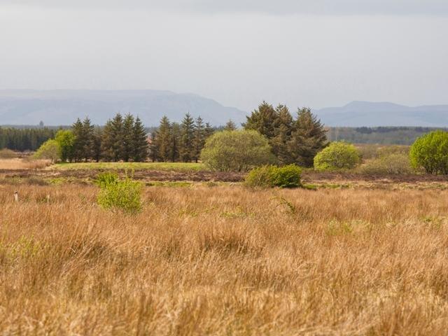 Views around the property
