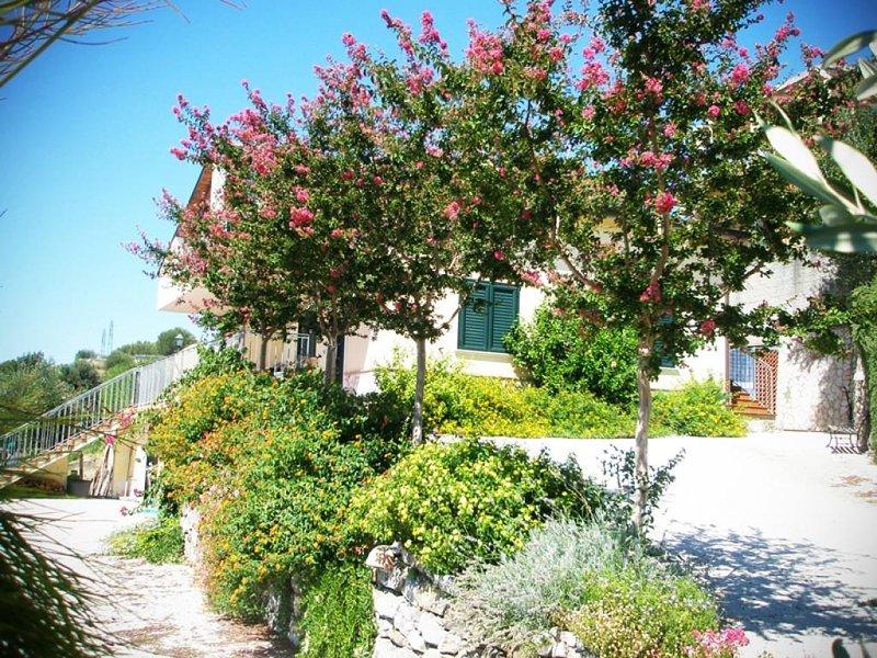 Villa Del Golfo 6 posti letto Vicino Al Mare Blu Cilento Bandiera Blu 2018, vacation rental in Scario