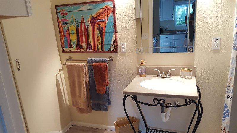 Beaucoup de rangement dans cette belle salle de bains. Pas de baignoire mais une douche extra-large.