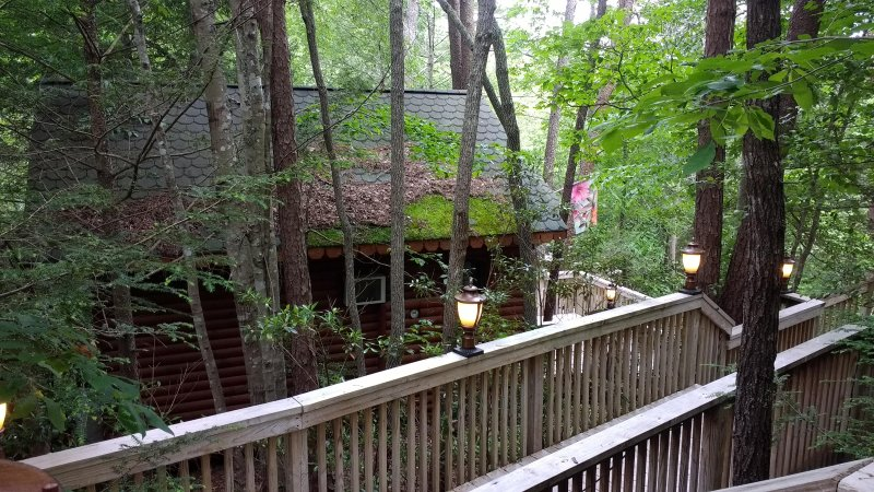 The Walkway and Stairs  to the Treehouse . This is a wonderful,cozy and unique cabin in the forest.