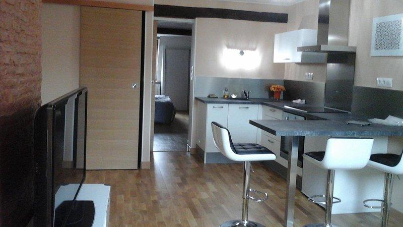 Appartement T2 tout confort entièrement équipé, holiday rental in Dole