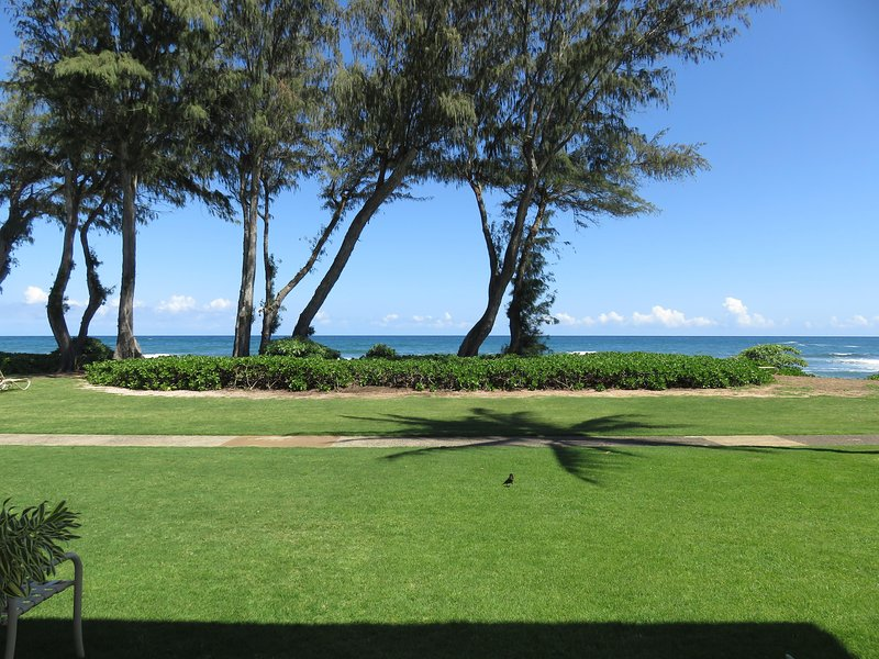Direct oceanfront location - view from patio!