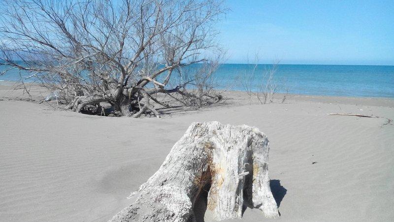 Arena baja playa