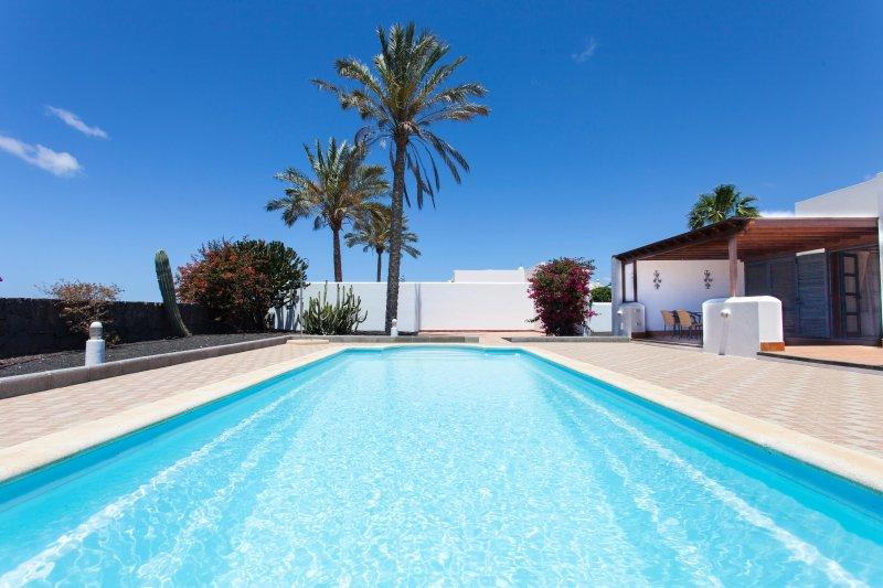 Large 11mx4m Pool surrounded by canarian garden