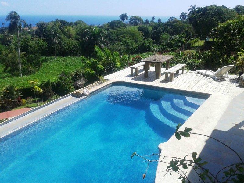 Villas Atlantis Dominikan Republic breathtaking ocean view – semesterbostad i Cabrera