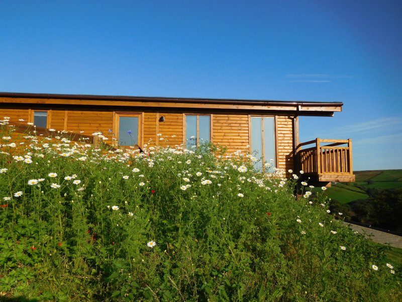 2 Log cabins with stunning views, ideal location near Cardiff, South Wales, vakantiewoning in Cardiff