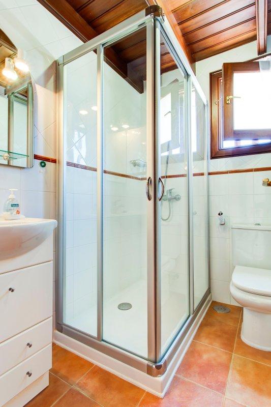 Shower/bathroom in Annex apartment