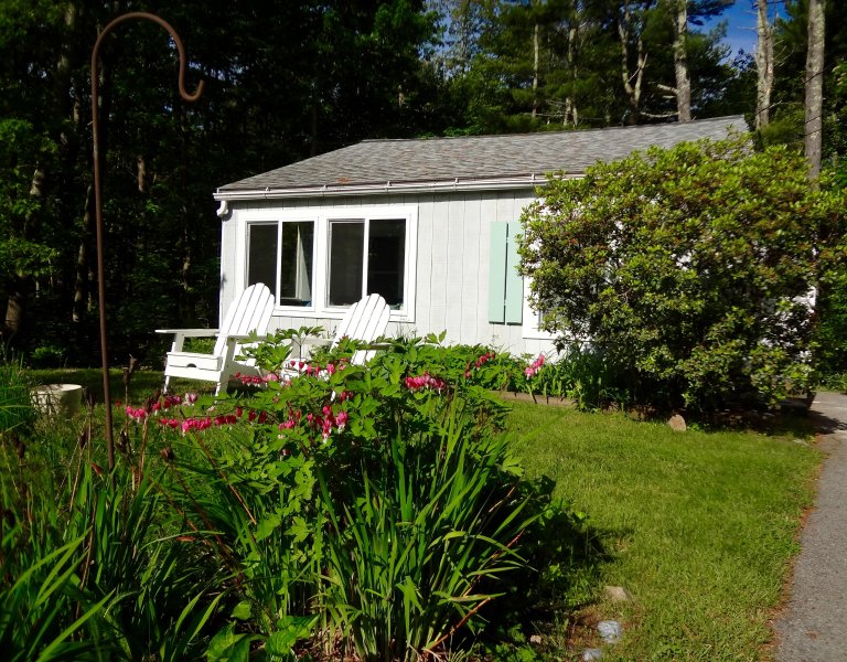 Cottage in the trees and near the sea, holiday rental in Ogunquit