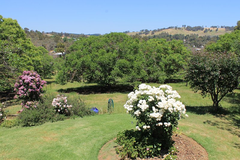 Cottage garden and view to south - late spring-early summer