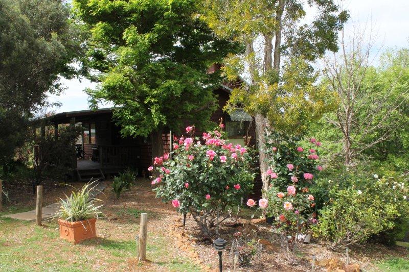 Trees and garden adjacent to cottage - entrance on west side
