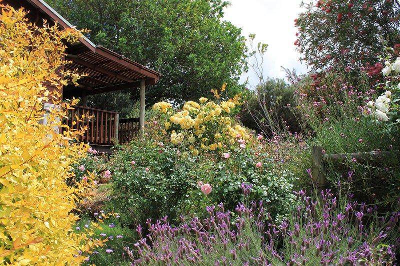 Cottage garden - east side