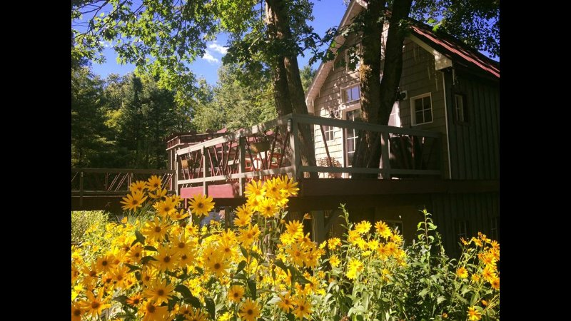 Tree house, vacation rental in Stratford