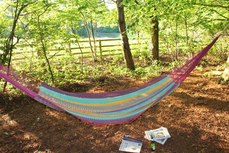 Hamac dans les arbres de hêtre pour les temps détendu à la ferme.