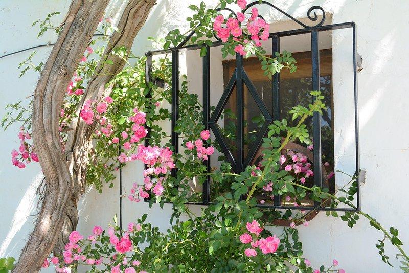 paredes espessas e plantio sombra manter a casa fresca no verão
