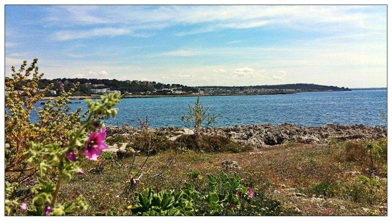 bahía de Santa Caterina