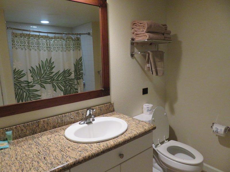 Lavabo, ducha / combinación de bañera, lavabo, encimera de granito.