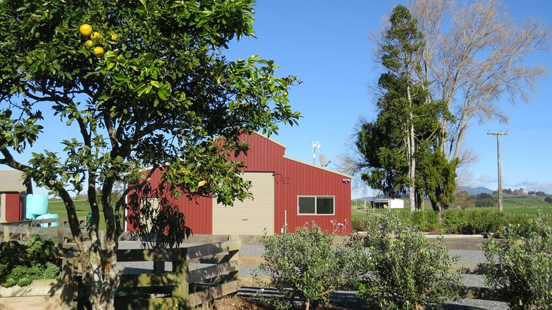 Funky 'red shed' on the outside. Luxury on the inside. Private & the perfect place to unwind.