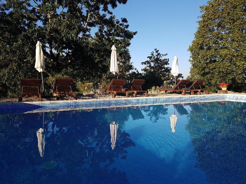 12m x 6m pool with Roman steps