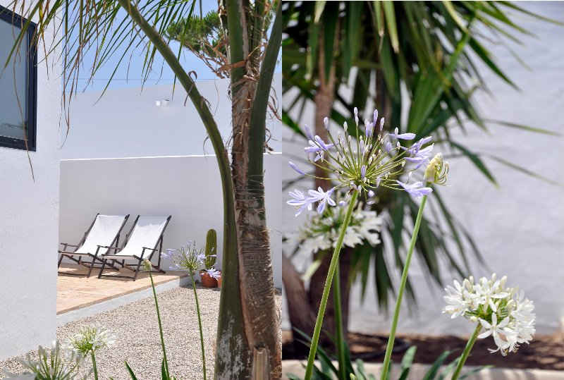 terraza - jardín