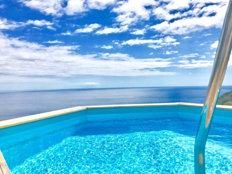 FARIOUS VILLA  A, vacation rental in Arco da Calheta