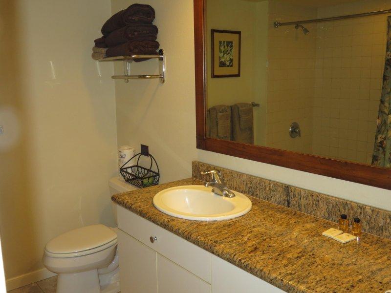 Baignoire / douche combo, comptoir en granit, évier, wc.