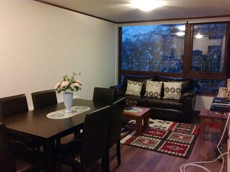 Departamento Termas de Chillan, holiday rental in Biobio Region