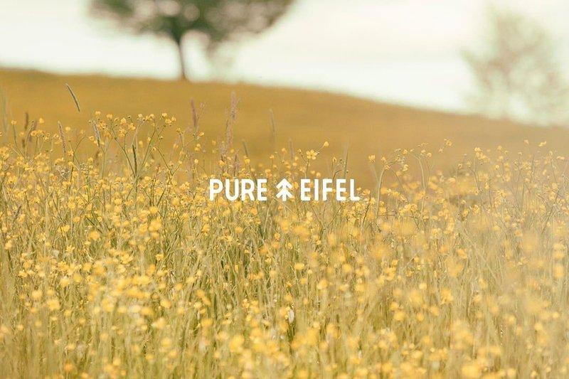 Pure Eifel, Oberkail, Eifel, holiday rental in Malberg