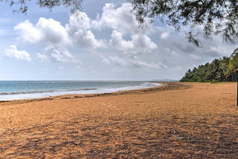 Nehmen Morgen Spaziergänge am Strand direkt vor Ihrem Studio!