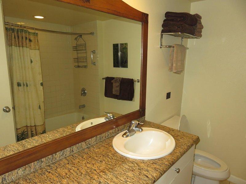 Ducha / combinado bañera, lavabo, inodoro, de granito.