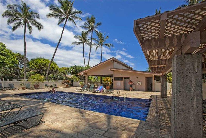 Palm Tree,Tree,Pool,Water,Building