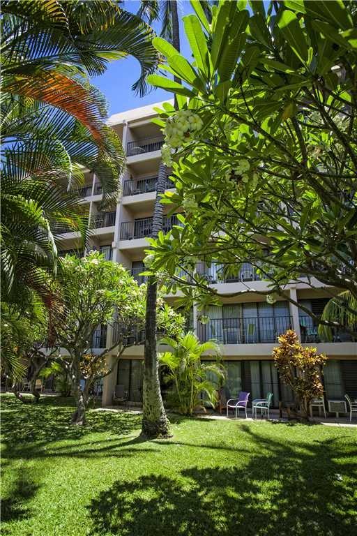 Building,Palm Tree,Tree,Yard,Field