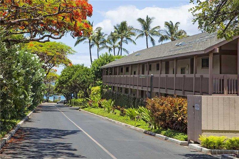 Tree,Palm Tree,Building,Boardwalk,Path
