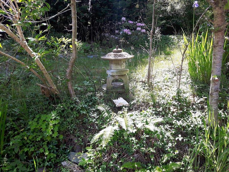 Volver jardines del patio