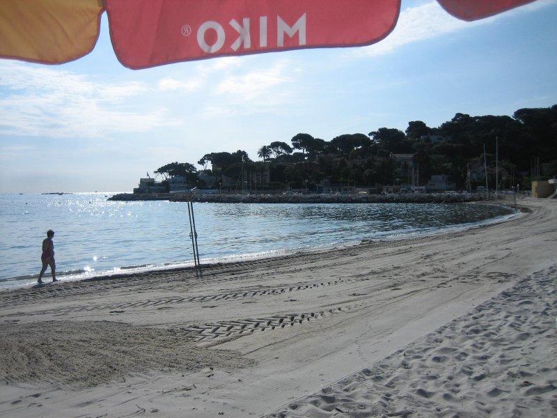 Sandy beach of soiled