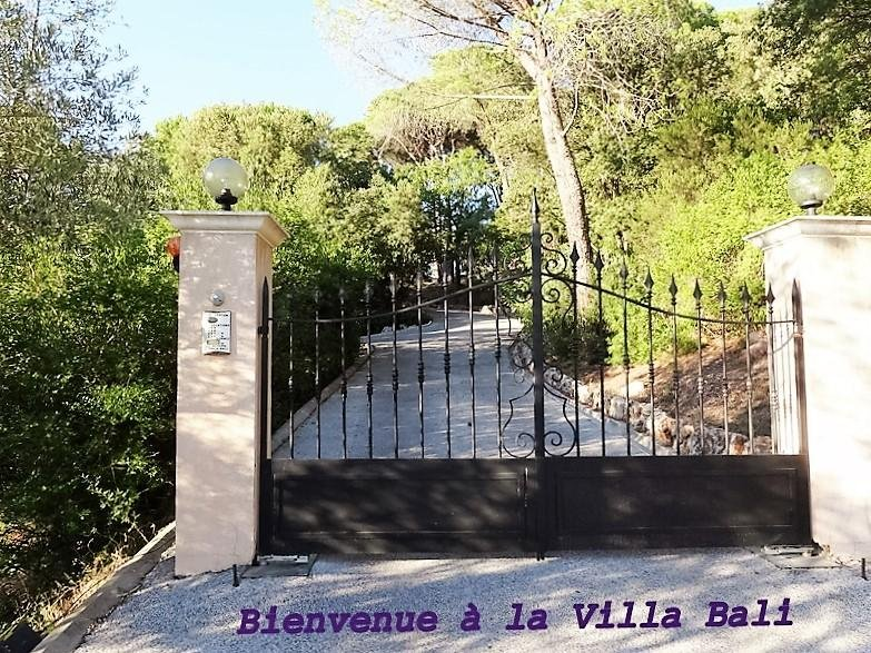 Gate with automatic remote control